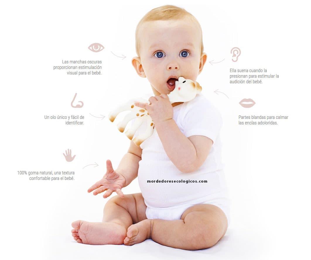 La jirafa Sophie desarrolla los cinco sentido de tu bebé